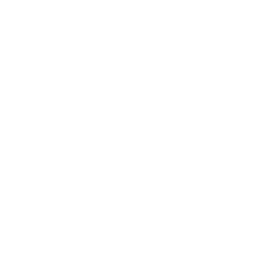 ASYO traditional logo